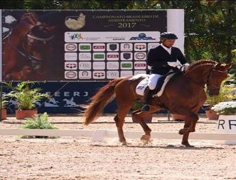 <b>FEERJ realiza o Campeonato Brasileiro de Adestramento, Concurso Internacional (CDI3*), Taça Brasil, Desafio Brasil e Brasileiro de Cavalos Novos, com excelência</b>